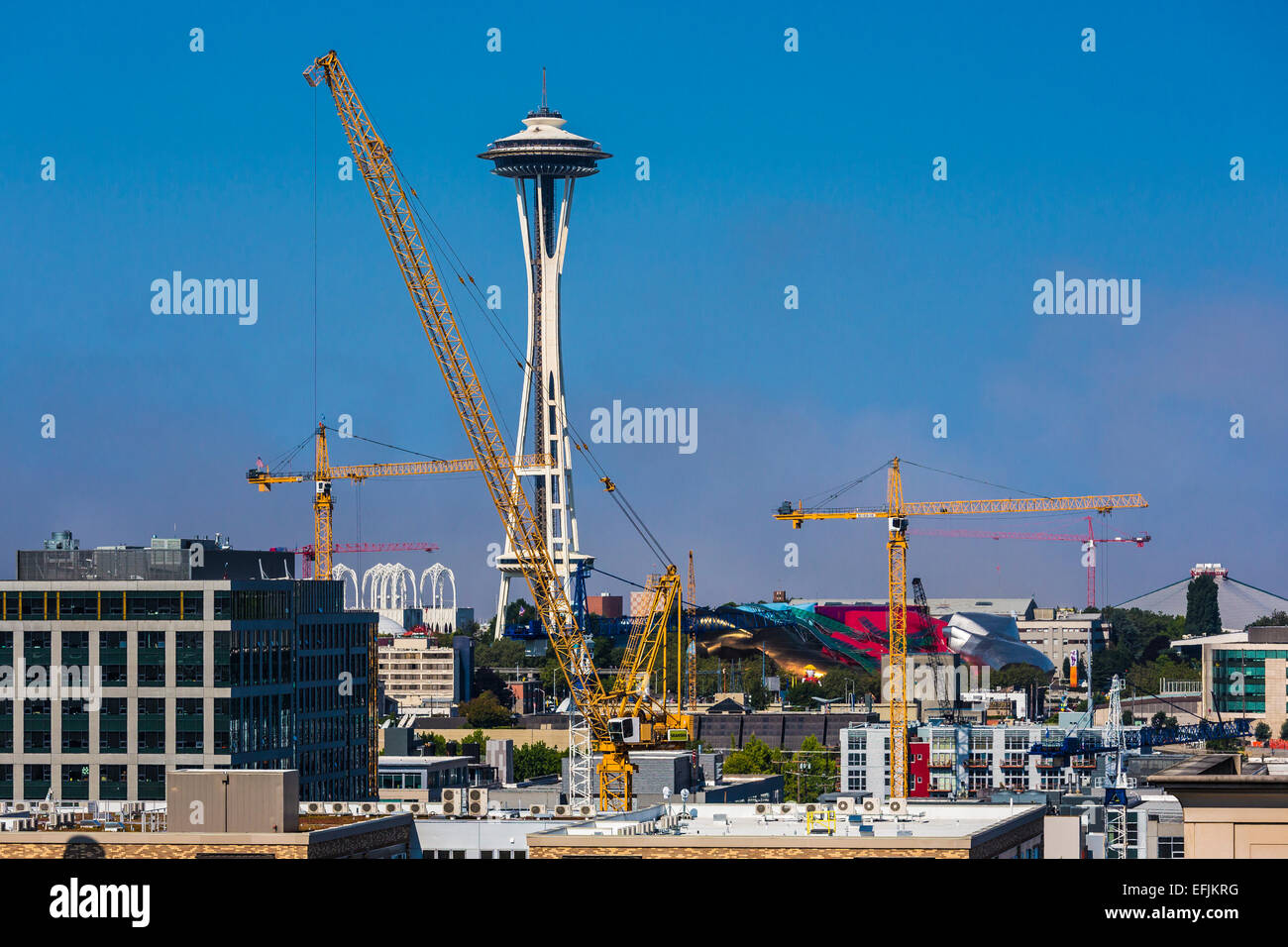 Construction cranes show the incredible building boom for Seattle builders