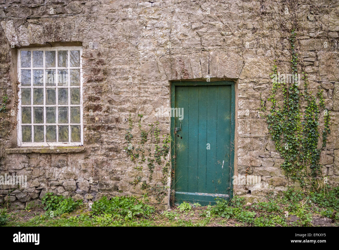 Design Farmhouse Door old stone farmhouse front door and window with ivy stock photo ivy