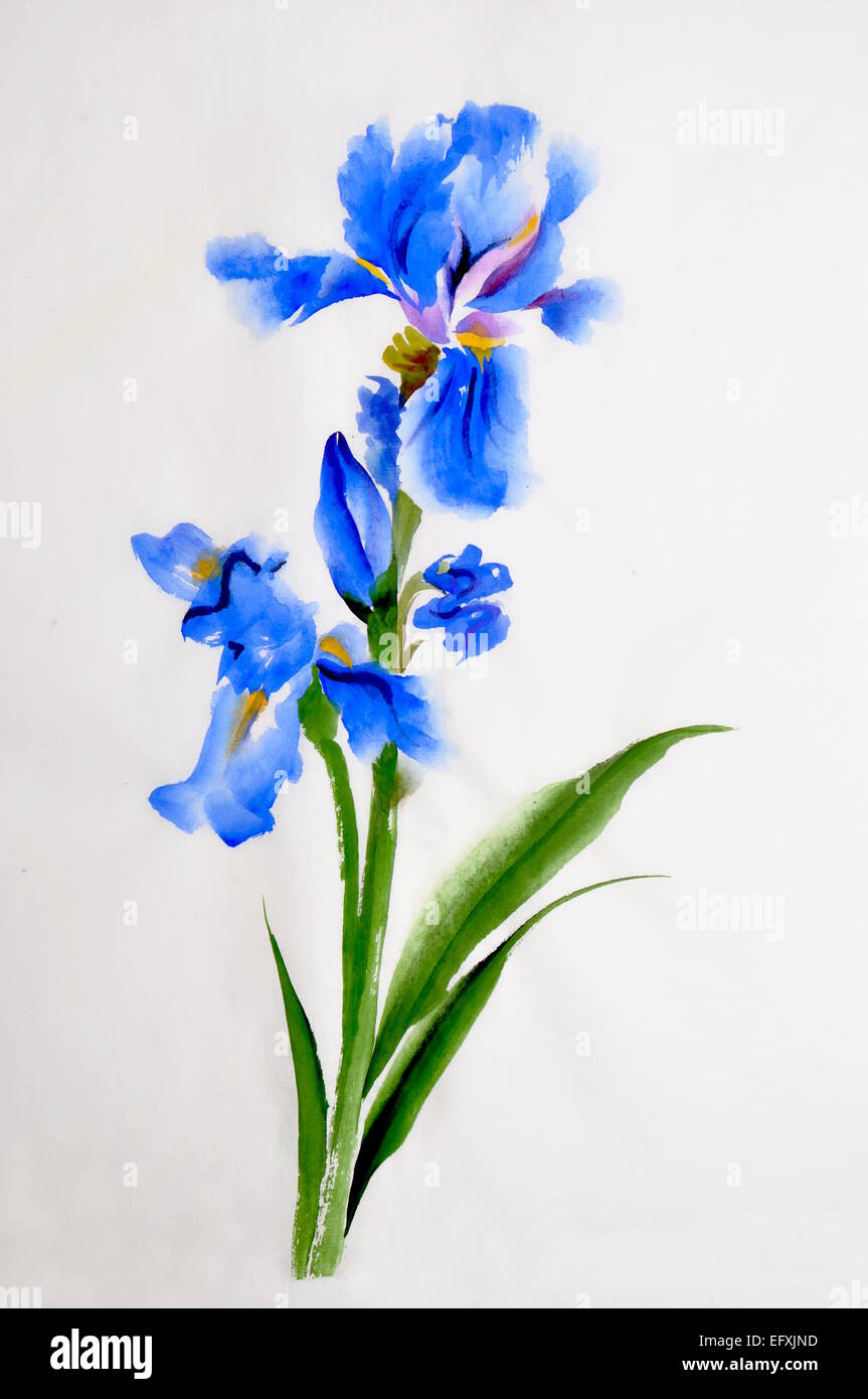 Blue iris flower watercolor painting on rice paper, Asian ... Pink And Green Ladybug Clipart