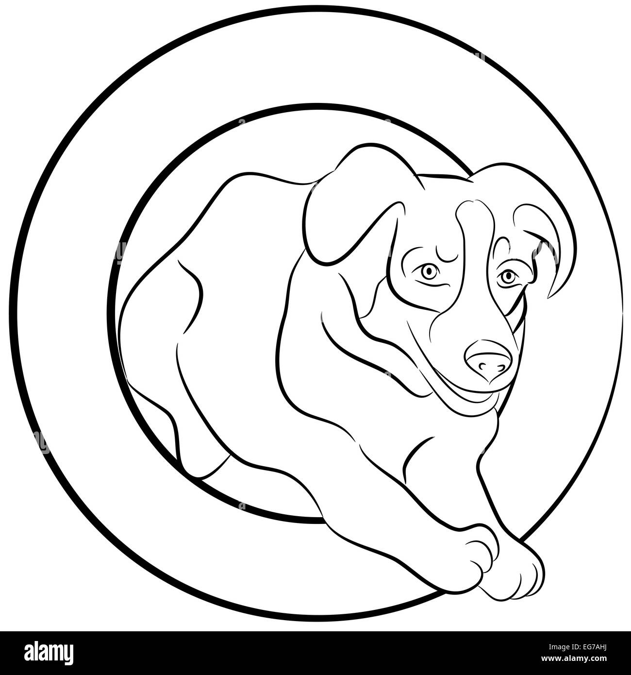An Image Of A Border Collie Dog Jumping Through A Hoop How To Draw A Cartoon