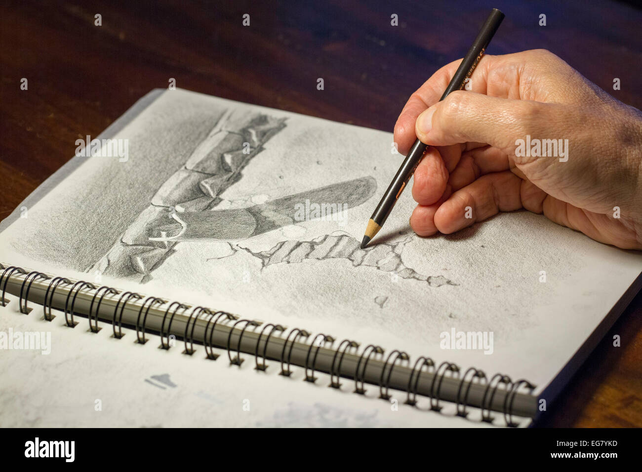 Drawing Using Lines : Artist using pencil on paper to draw a picture lines and stock