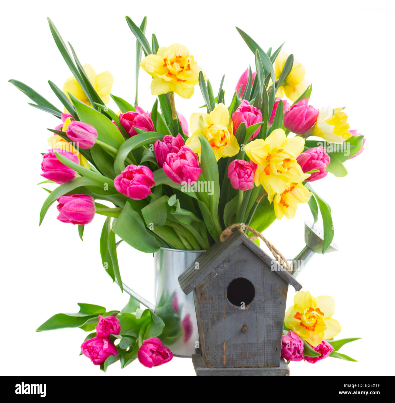 Bunch of tulips and daffodils in vase stock photo royalty free bunch of tulips and daffodils in vase floridaeventfo Gallery