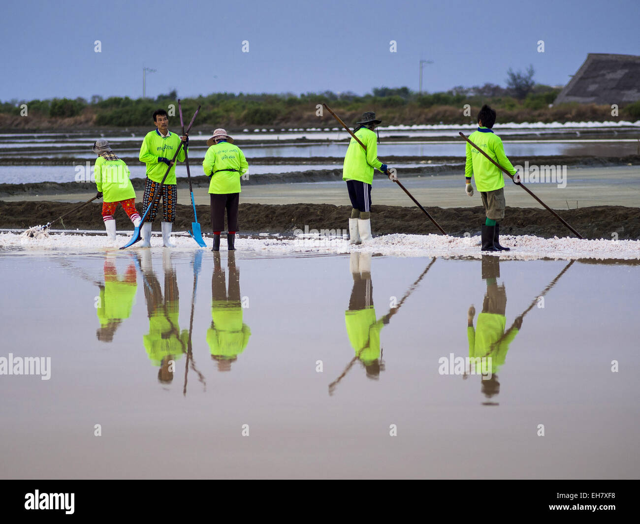Samut Sakhon Thailand  city photos gallery : Na Khok, Samut Sakhon, Thailand. 9th Mar, 2015. Workers On A Salt ...