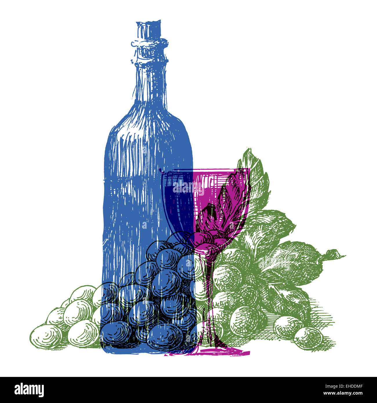 wine bottle vector logo design template grapes or