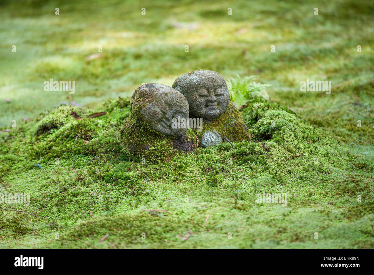 Sanzen In Buddhist Temple, Ohara, Japan. Jizo Statues (the Protector Of  Travellers) Emerging From The Ground In The Moss Garden