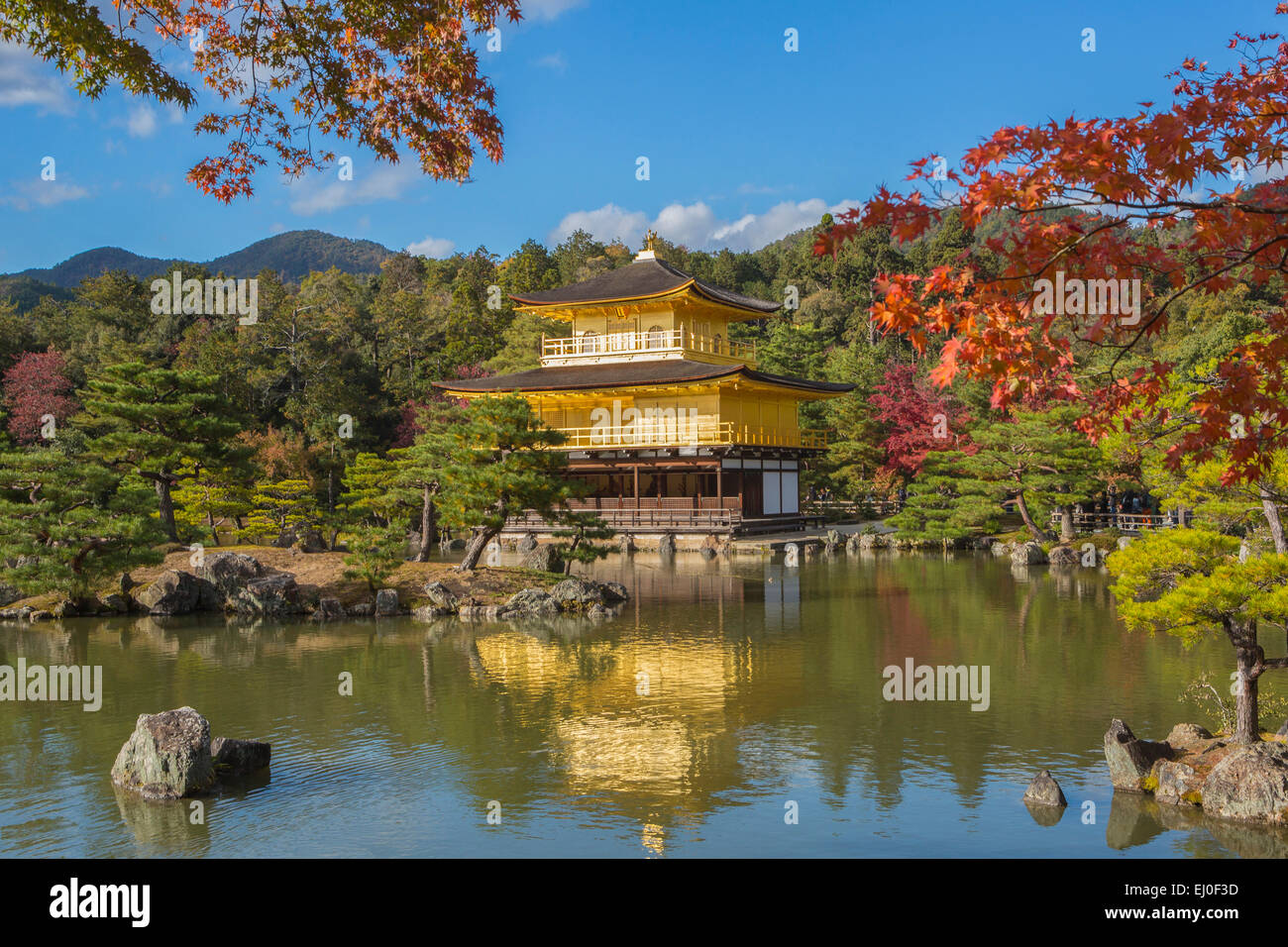 famous landscape architecture in the world. stock photo - world heritage, japan, asia, kansai, kinkaku-ji, kyoto, landscape, temple, architecture, colourful, fall, famous, gold, golden, m famous landscape architecture in the g