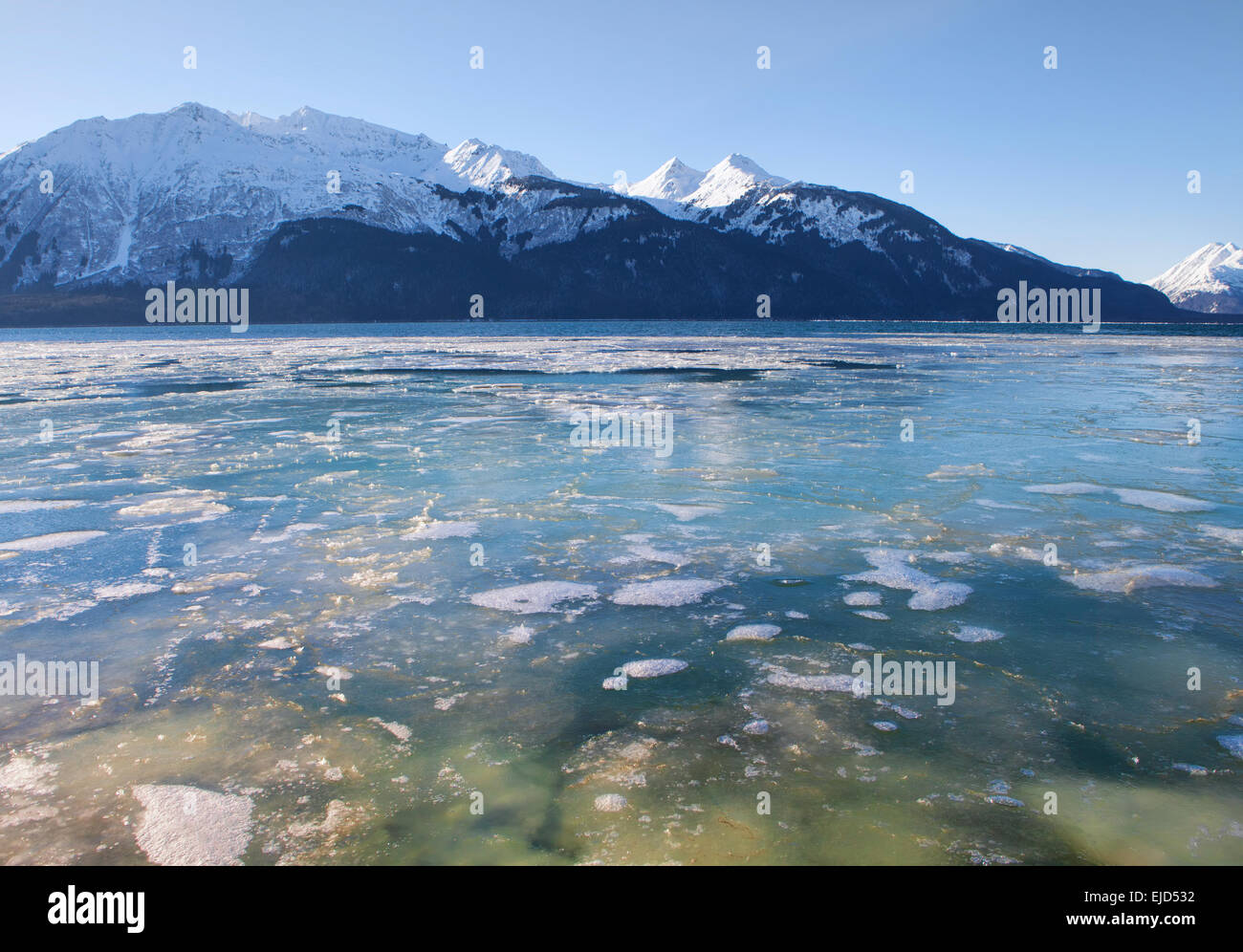 Alaska haines county - Frozen Water Of The Chilkat Inlet Near Haines Alaska In Winter On A Sunny Day