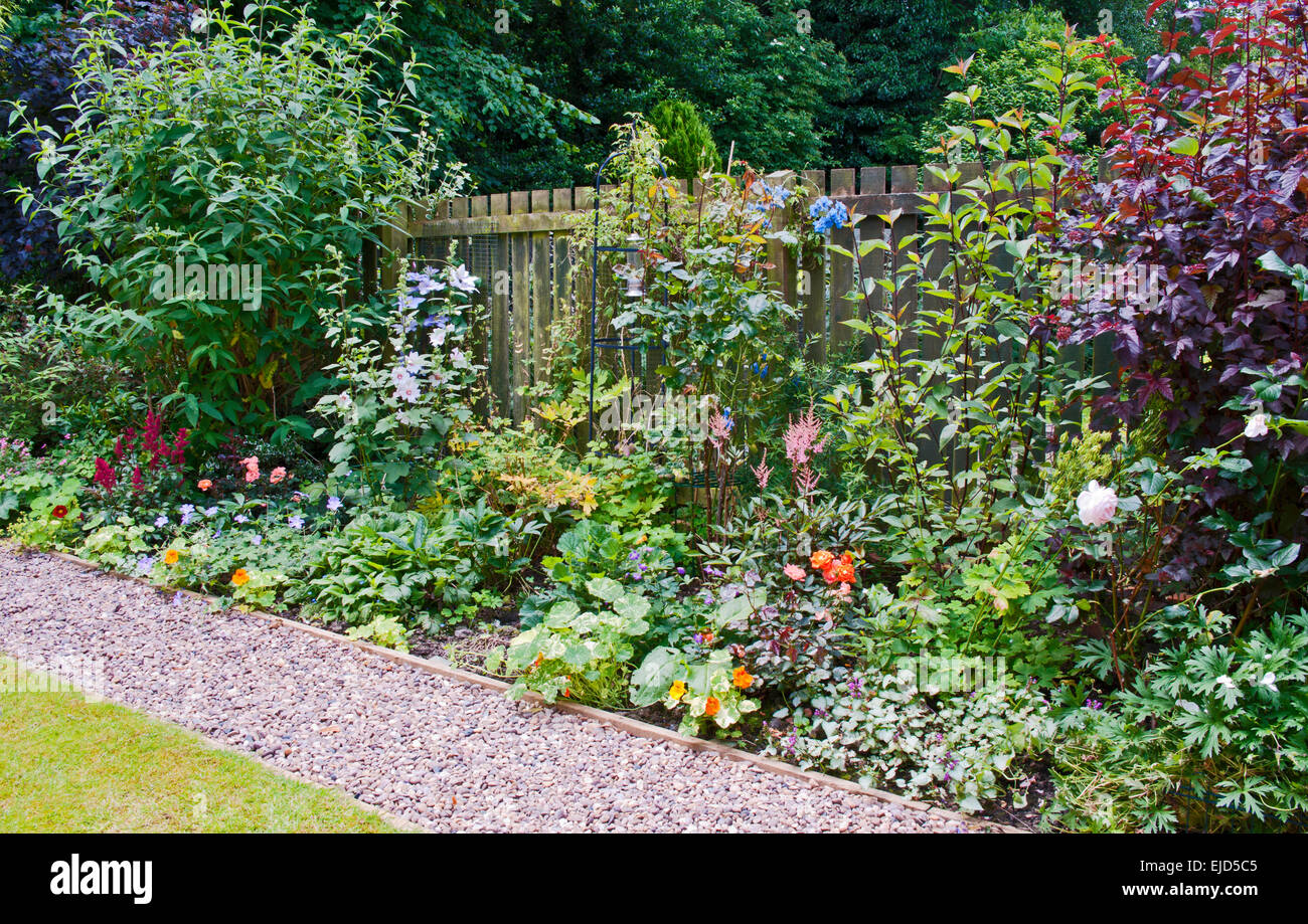 herbaceous border with flowering plants and shrubs, next to pebble, Beautiful flower