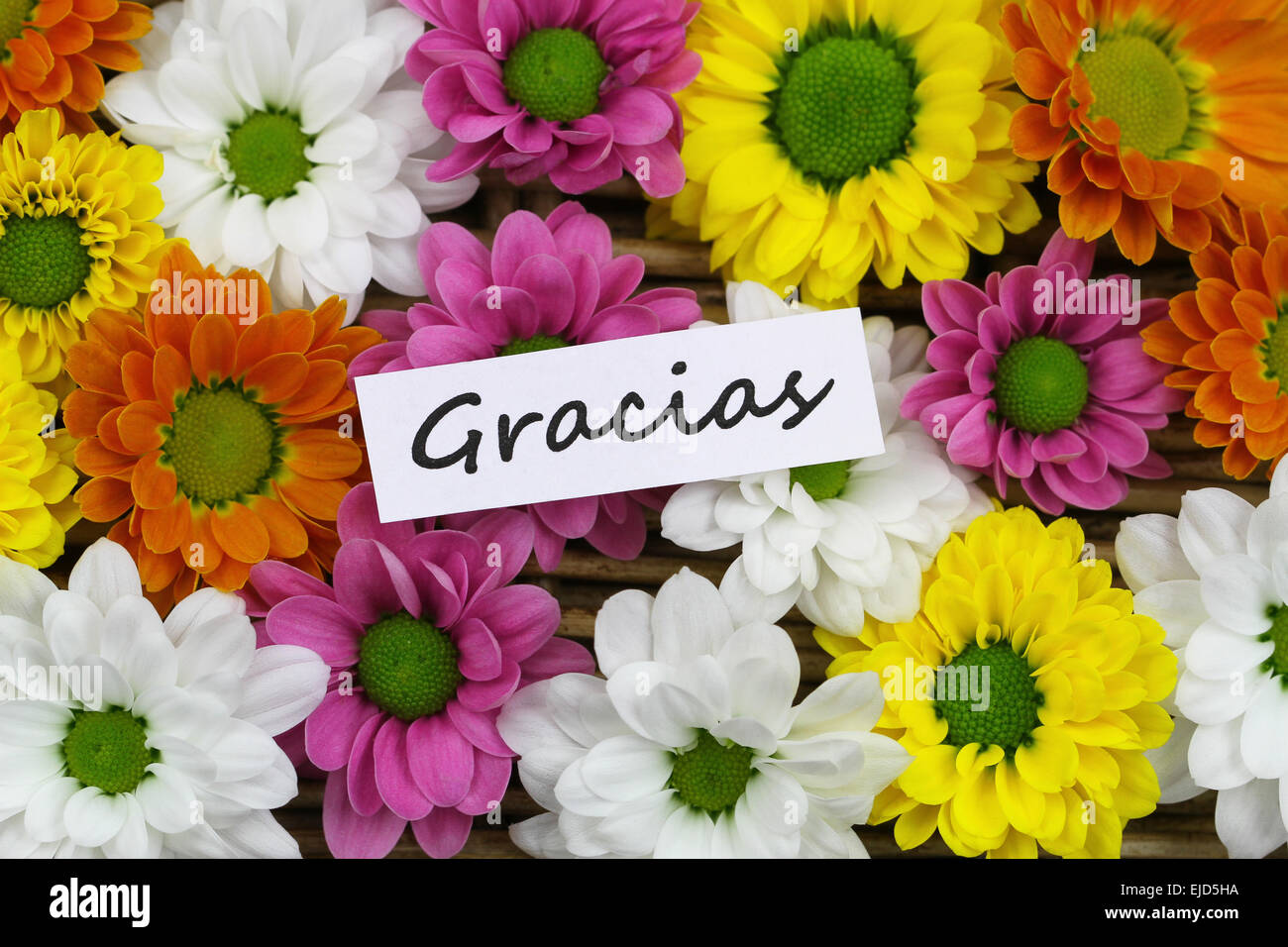 Gracias which means thank you in Spanish card with colorful Santini Stock P