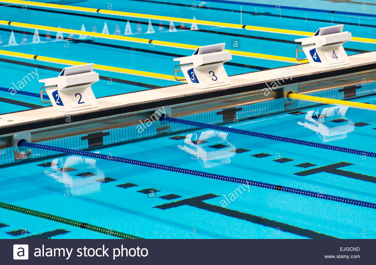beautiful olympic sport competition swimming pool lanes in a clear transparent blue water facility - Olympic Swimming Pool Lanes