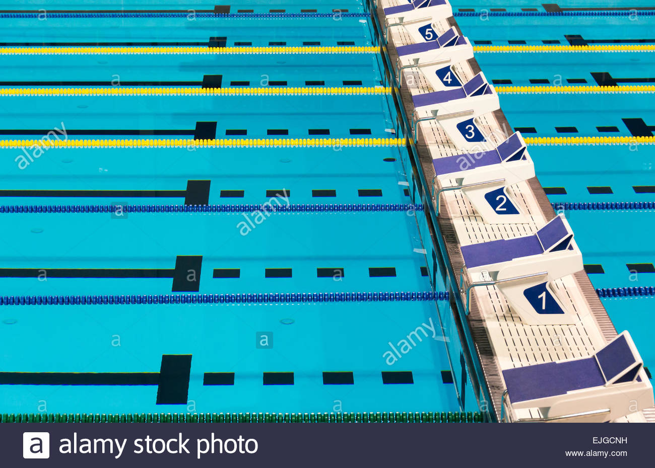beautiful olympic sport competition swimming pool lanes in a clear transparent blue water facility