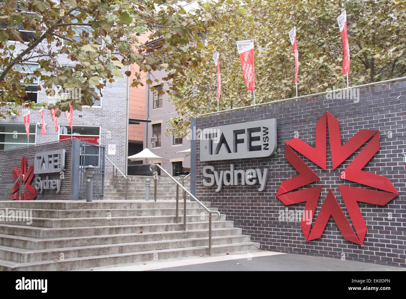 Partner Project - Study NSW + Successful Graduate