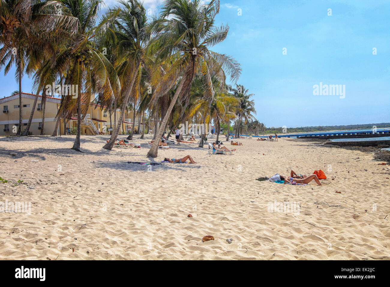 People Lying In The Sand Of Tropical Beach With Palm Trees And A Blue Ocean On Maria La Gorda Cuba