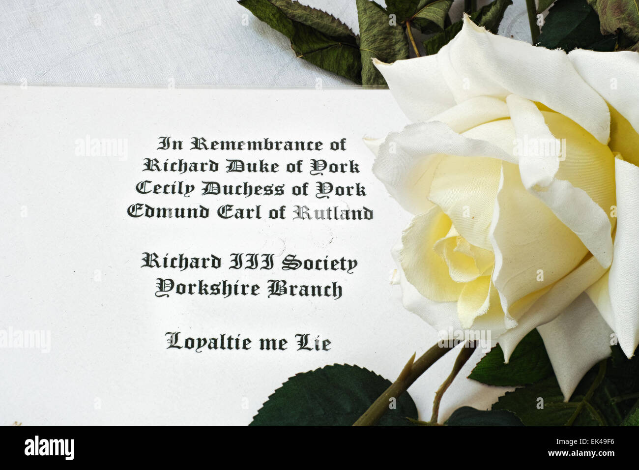A white rose symbol of the house of york plantagenets claimants a white rose symbol of the house of york plantagenets claimants to the english throne inthe fifteenth century buycottarizona Choice Image