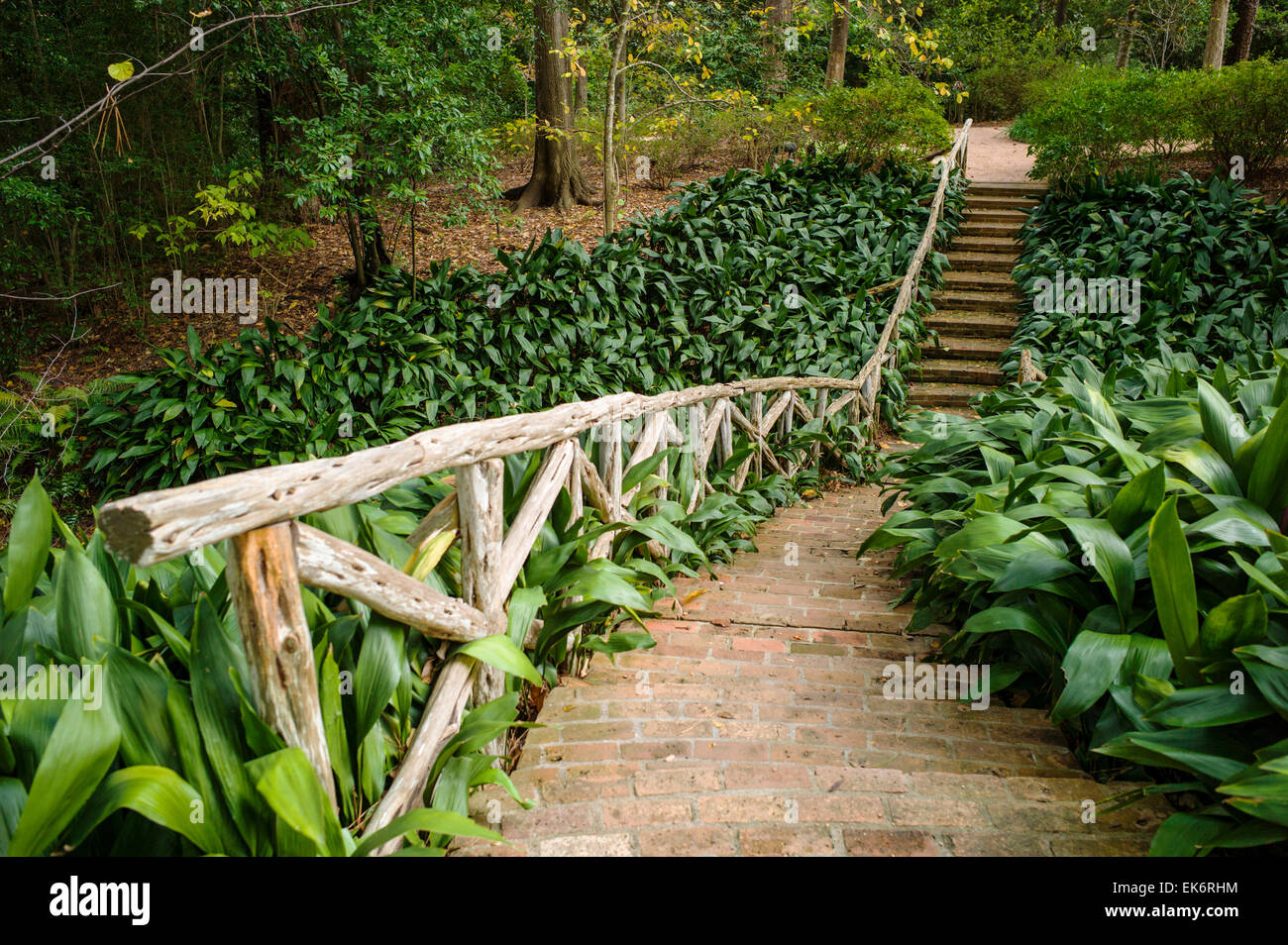 Brick Pathway, Bayou Bend Gardens U0026 Home, Museum Of Fine Arts Houston, House
