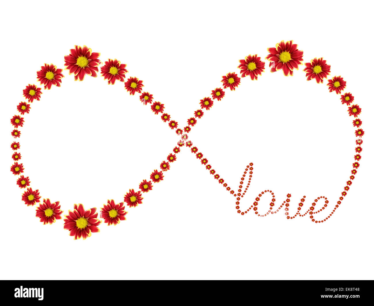 Infinity symbol of red flower and love text isolated on white infinity symbol of red flower and love text isolated on white background biocorpaavc