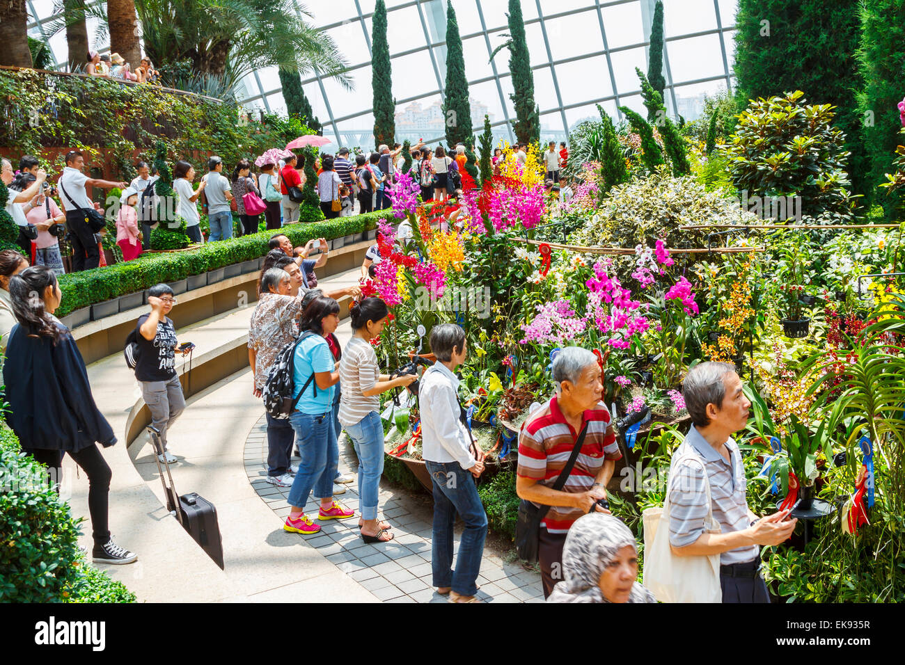 Flower Dome Conservatory. Gardens By The Bay. Singapore, Asia.