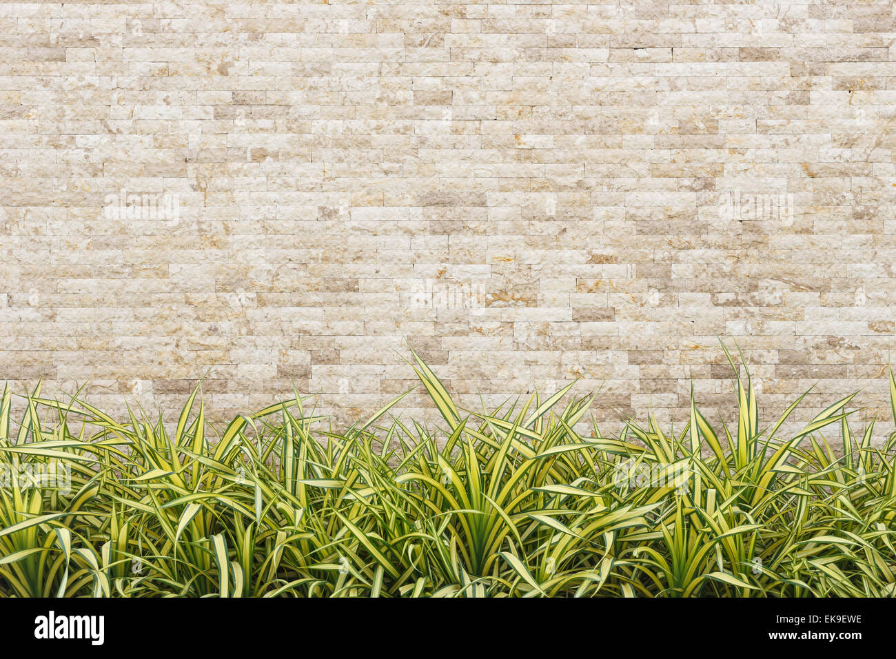 travertine stone wall and decorative garden stock photo, royalty