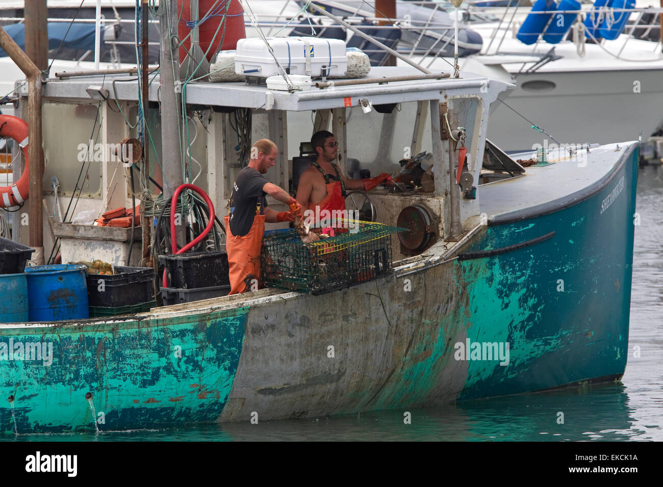 Maine lobster fishermen on lobster fishing boat Stock Photo, Royalty Free Image: 80798294 - Alamy