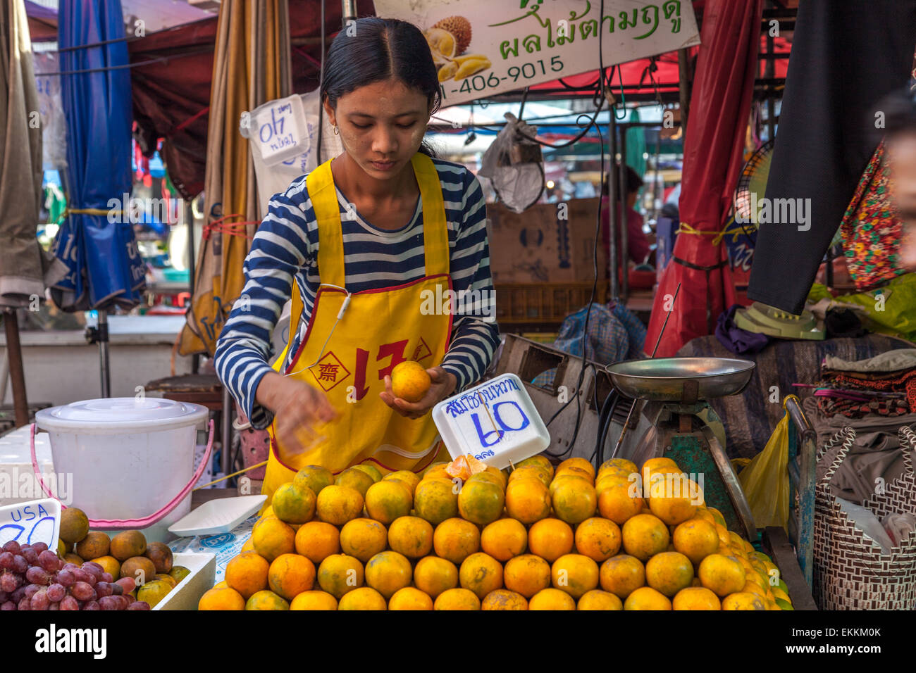 Young woman selling oranges at Nonthaburi market Stock Photo, Royalty Free Im...