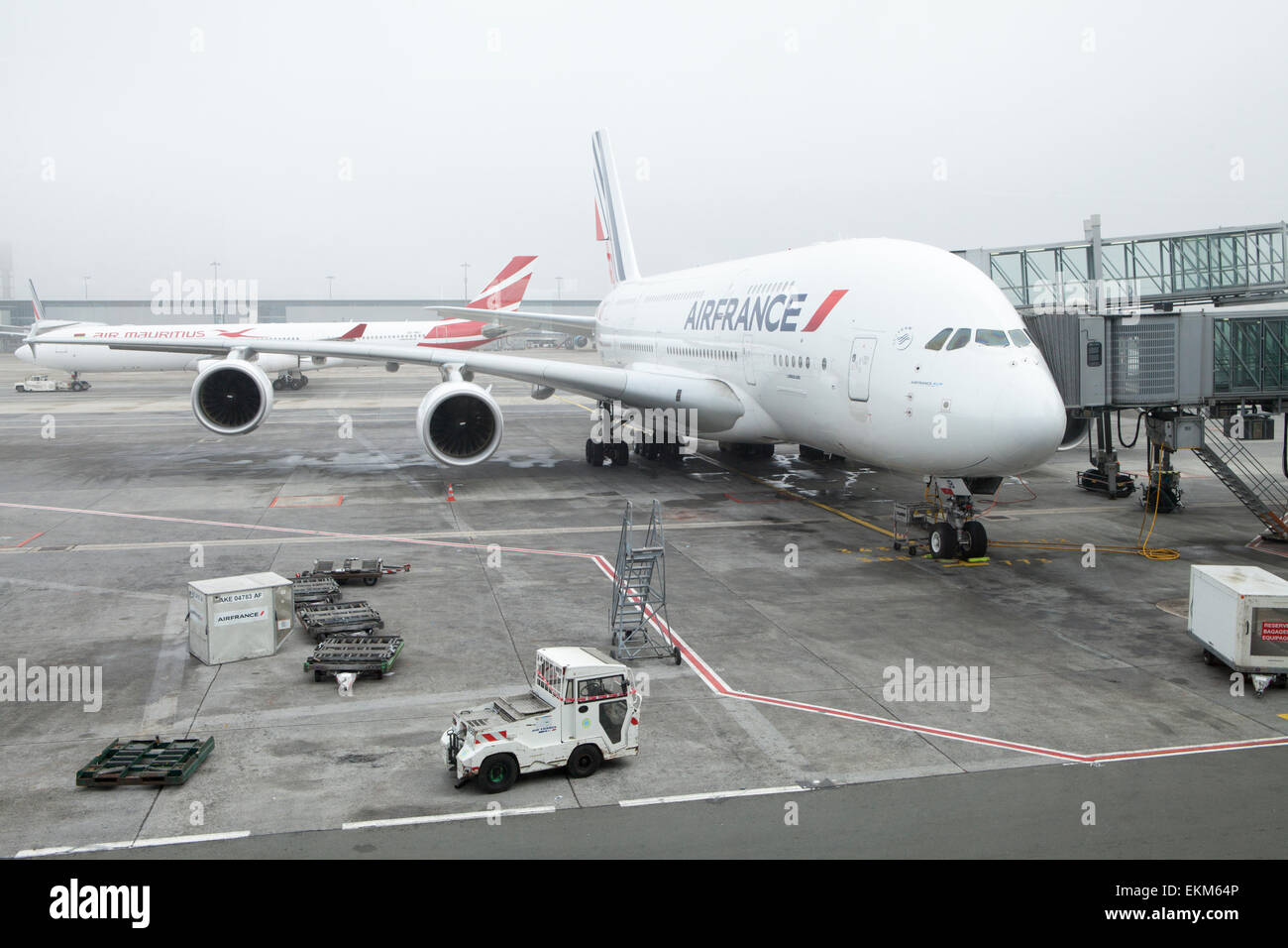 air france plane on the tarmac at a misty paris charles de gaulle stock photo royalty free. Black Bedroom Furniture Sets. Home Design Ideas