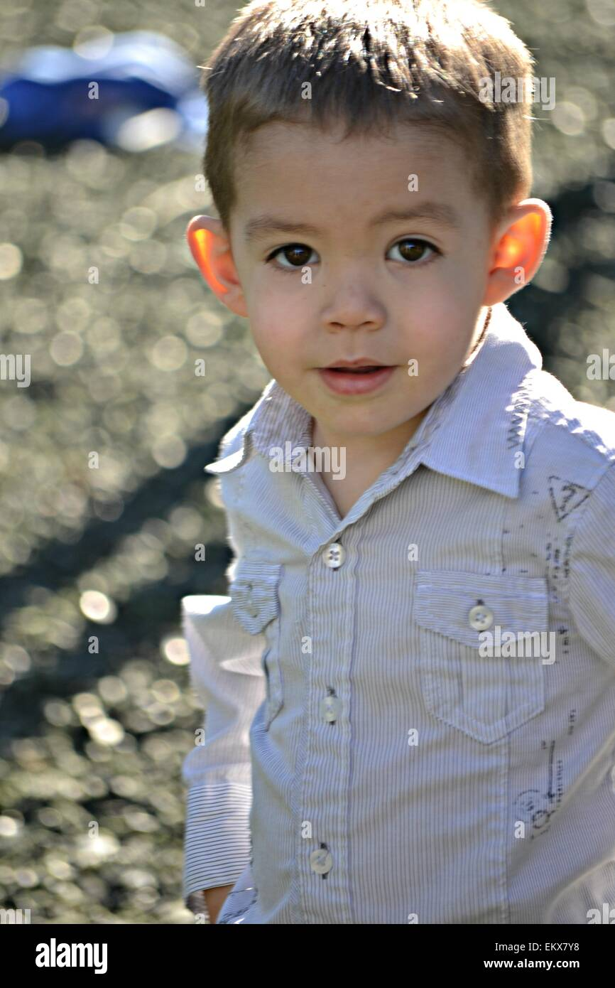 3 Year Boy Bedroom Ideas: A Handsome Big Brown Eyed 3 Year Old Boy Stock Photo