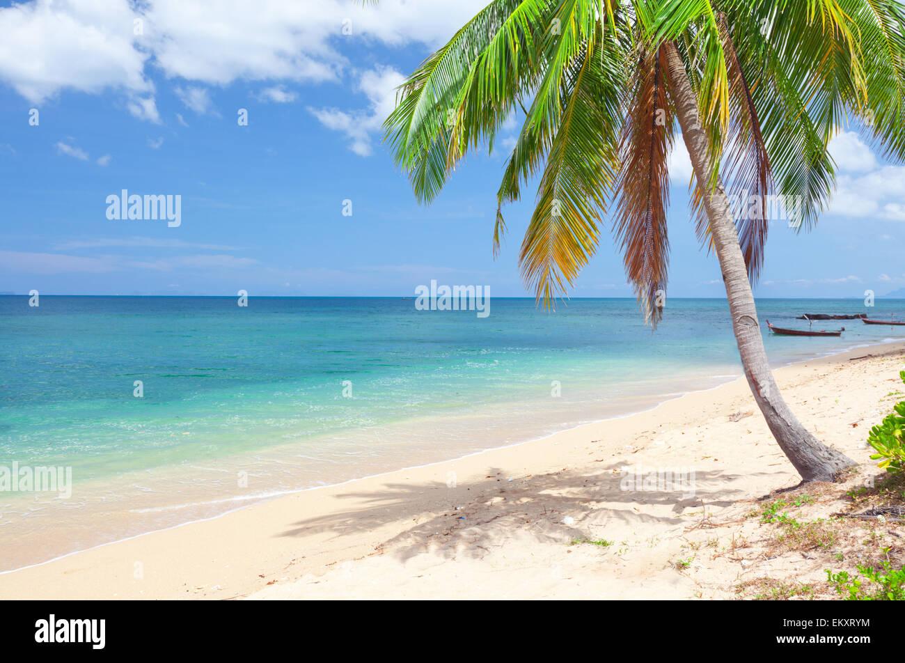 Lanta Paradise Beach Resort Email