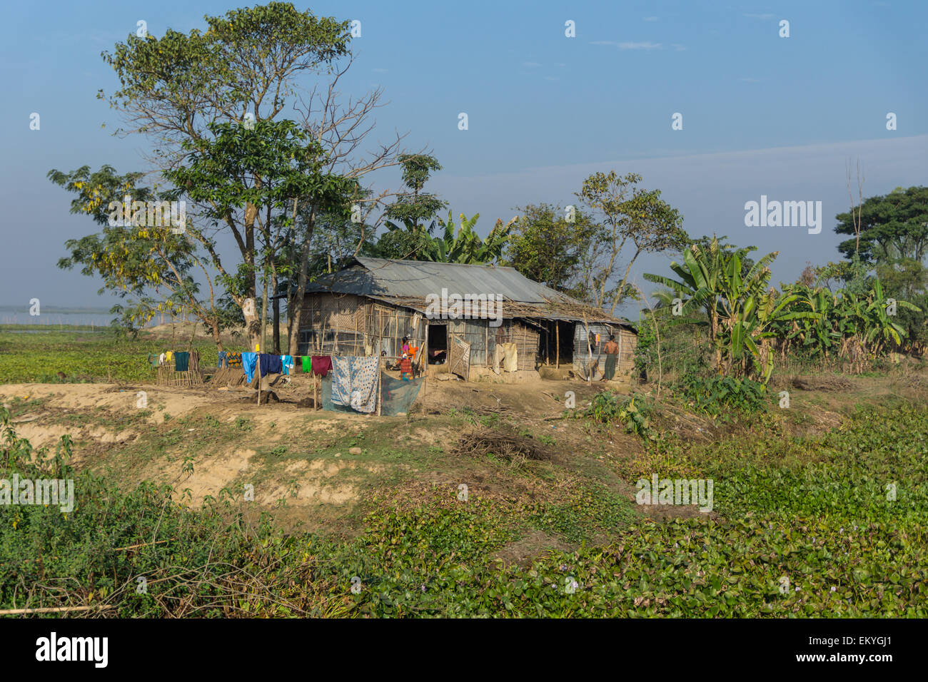Village house in bangladesh stock photo royalty free for Bangladesh house picture