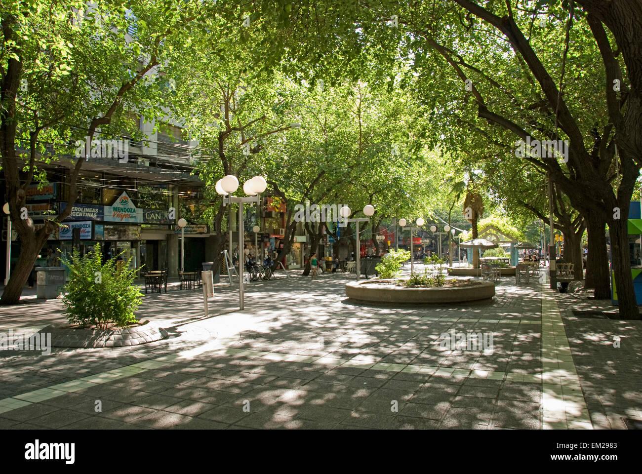 pedestrian walkway shaded by trees mendoza argentina