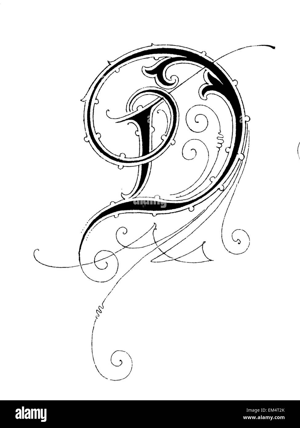D Line Drawings : Letter d font art nouveau stock photo royalty free