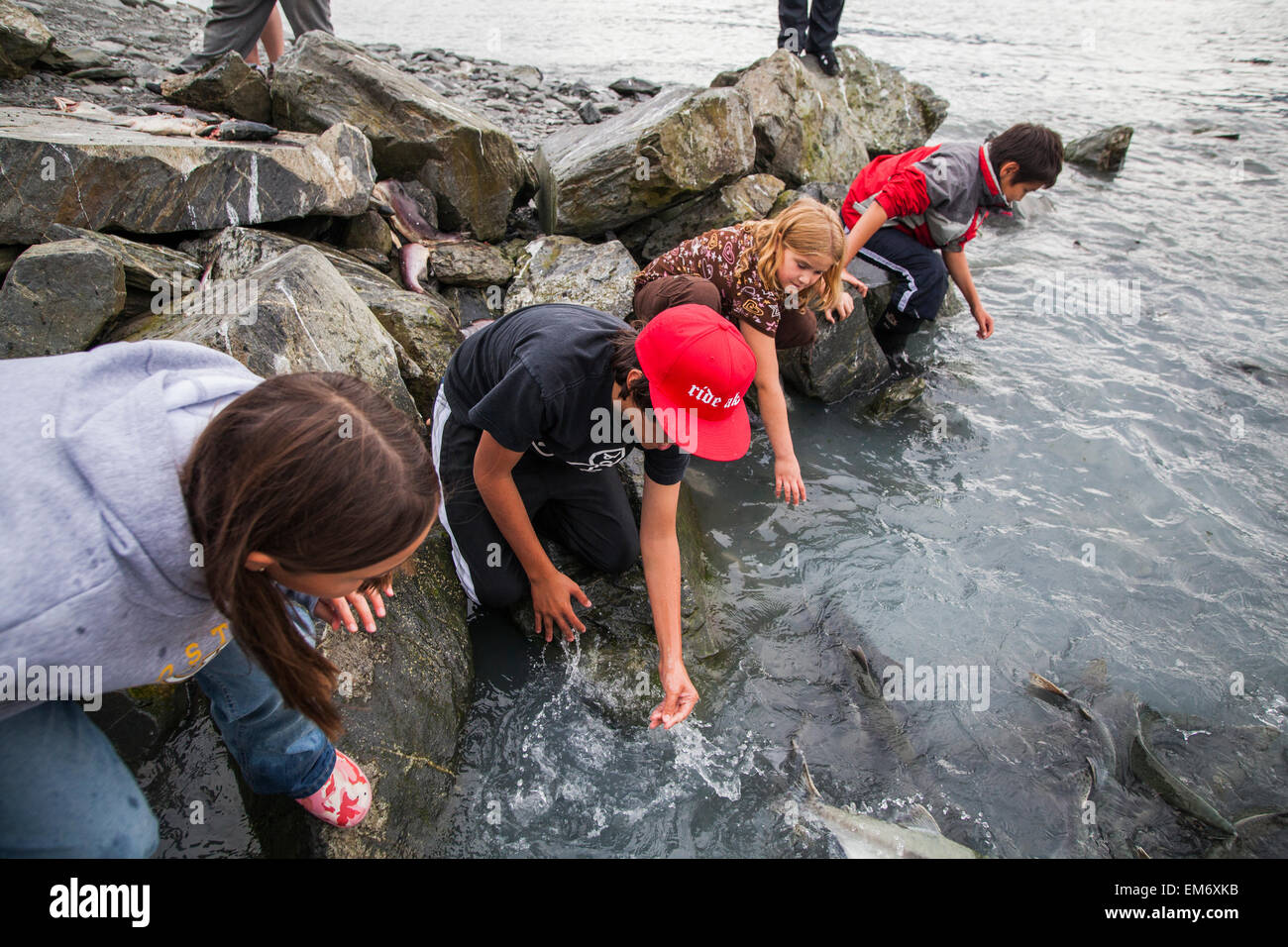 Children catch and throw salmon over the access gate at for Fish farms near me