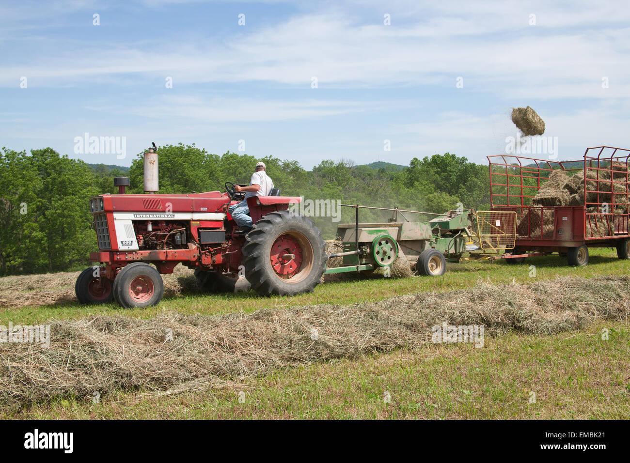 International Tractor In Field