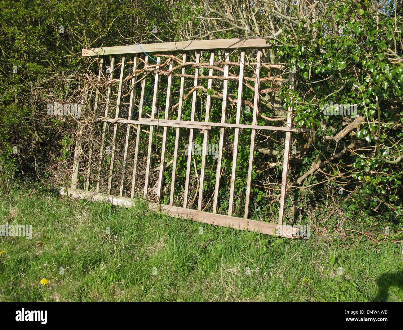 Captivating Stock Photo   Temporary Garden Fence