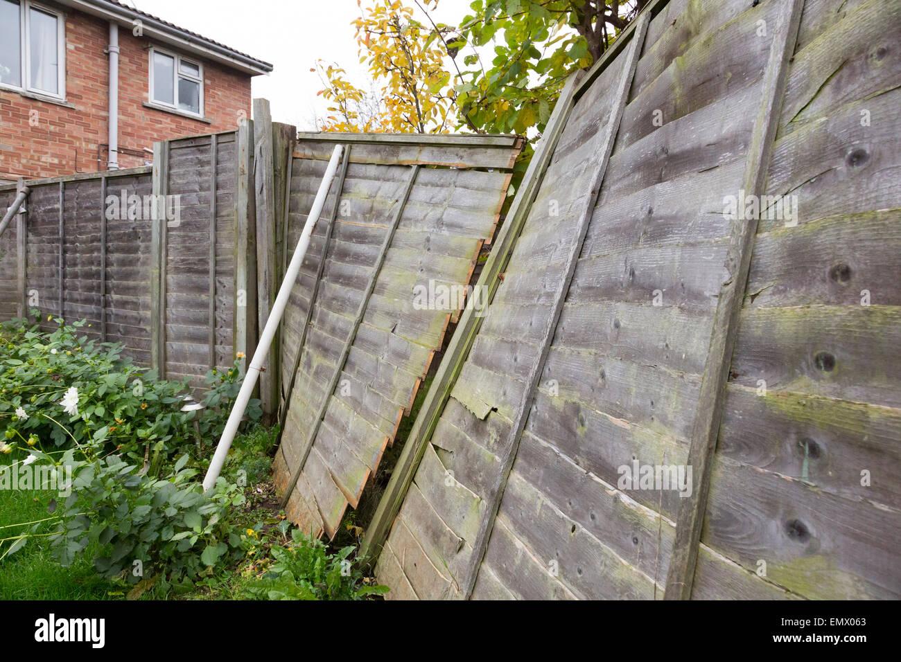 Broken fence panels stock photos broken fence panels stock wooden panel fence blown over in a storm stock image baanklon Images