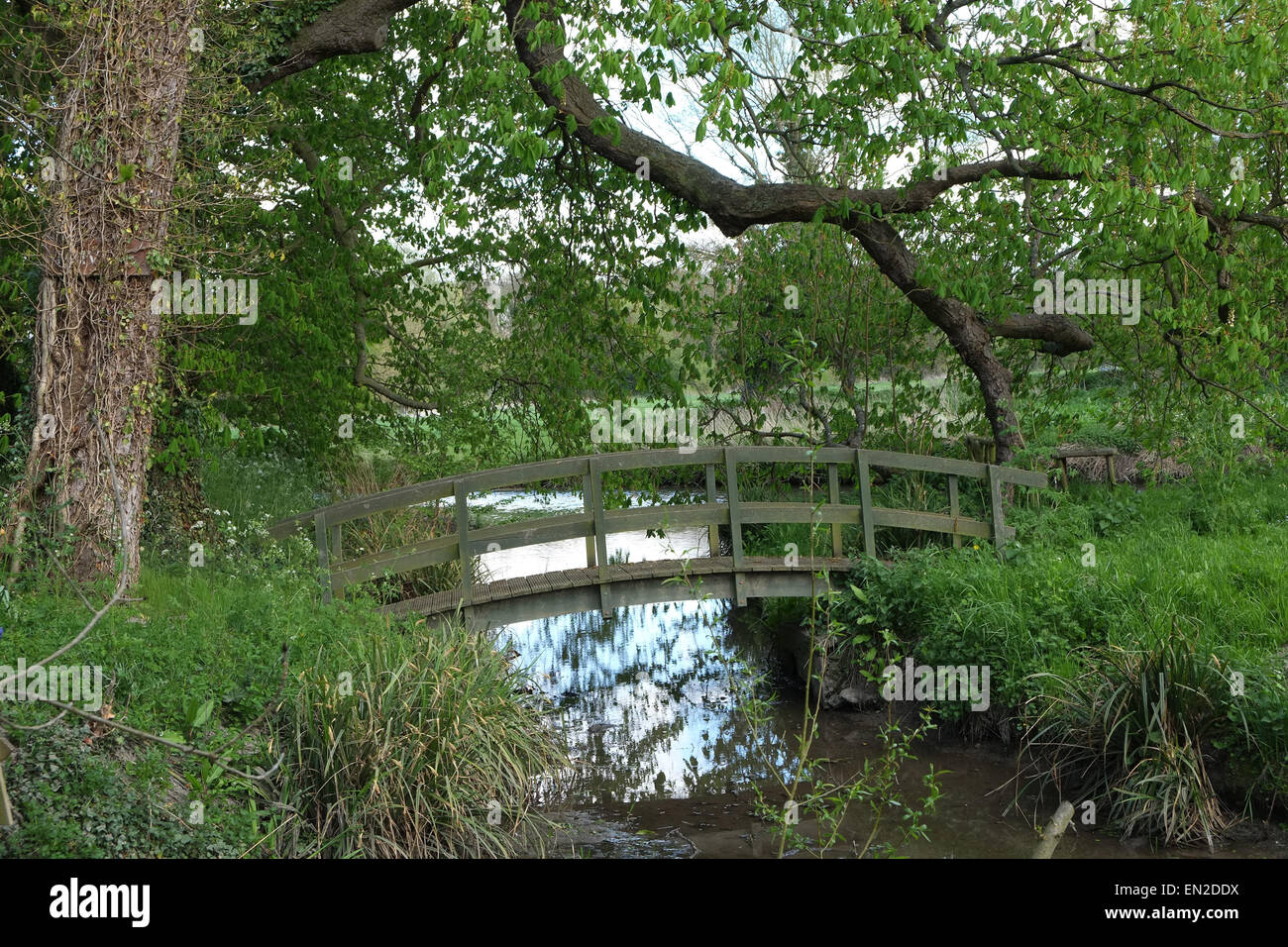 rustic wooden bridge in a large garden neat cambridge 25th april 2015 - Large Garden 2015