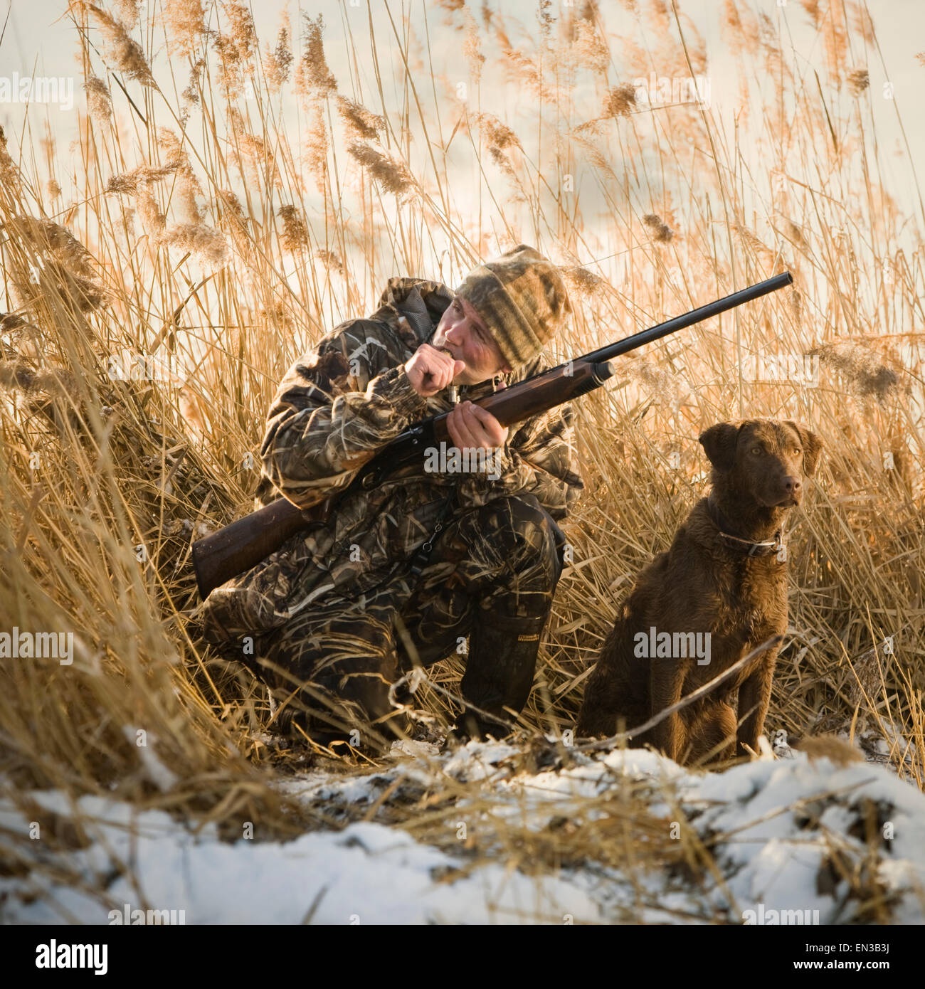 Deer Hunting Stock Photos Royalty Free Business Images