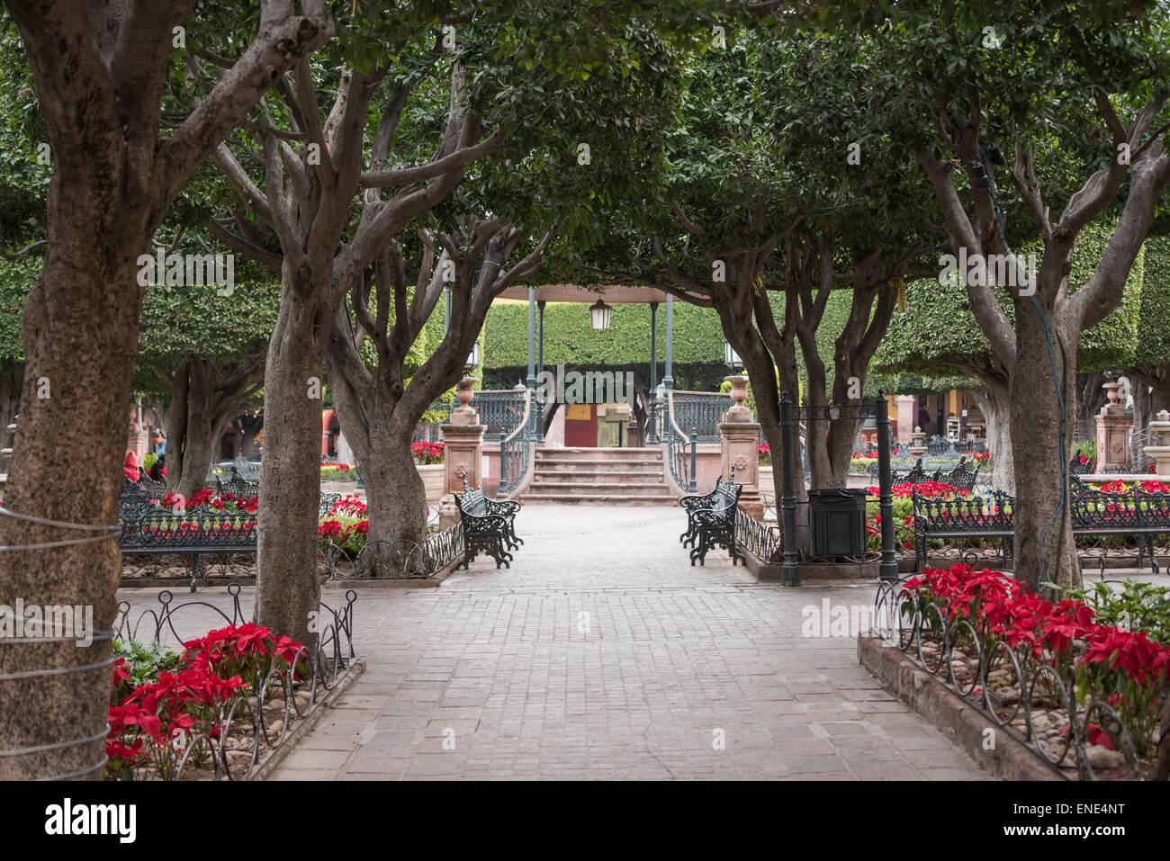 El jardin benches and garden in san miguel de allende for Jardin san miguel de allende