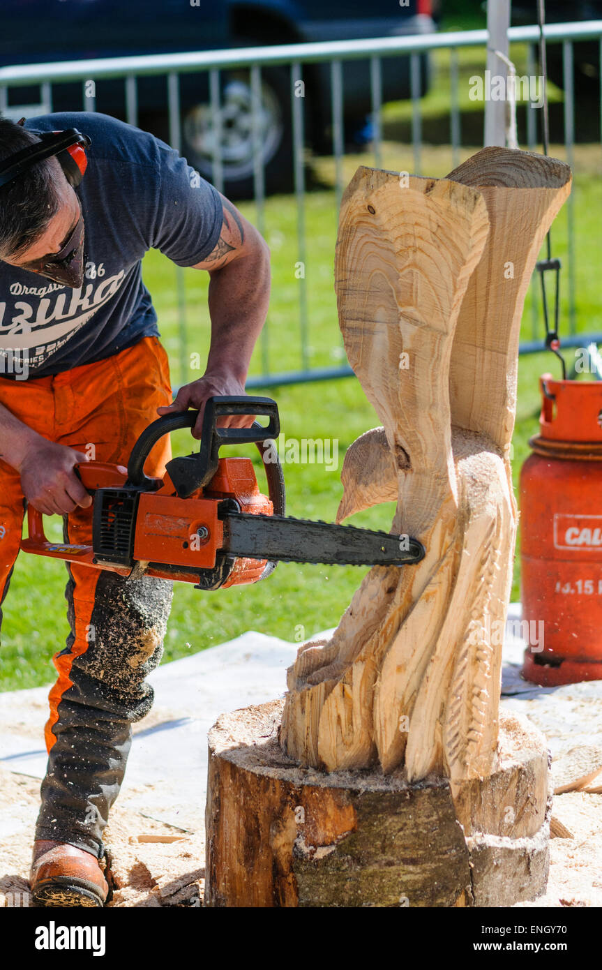 A man uses a chainsaw to carve a large eagle from a tree for Tree trunk uses