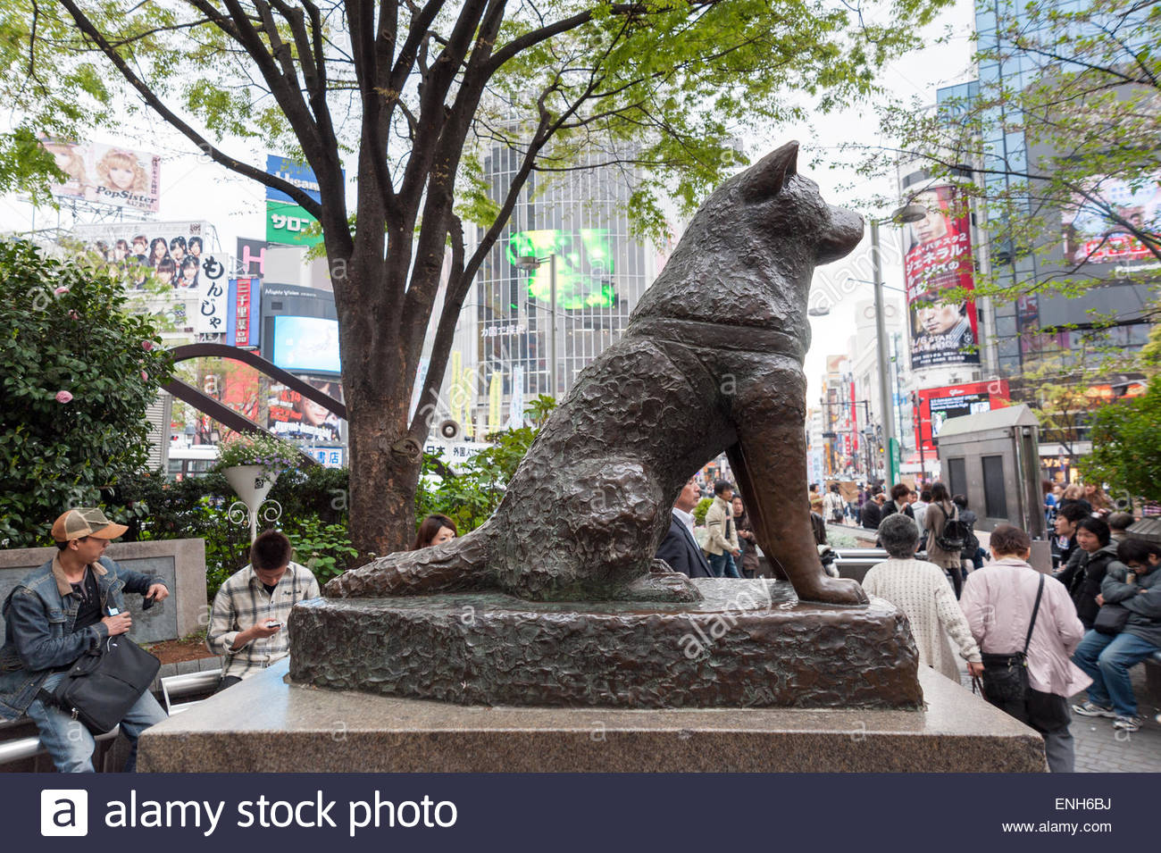 Hachiko Statue Famous Monument | www.imgkid.com - The ...