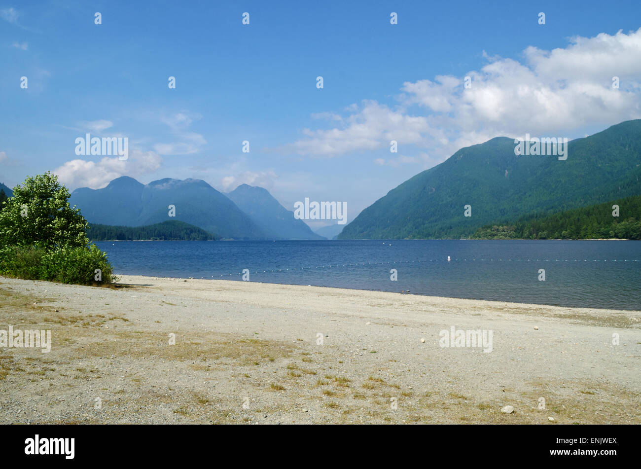 the-sandy-beach-of-alouette-lake-in-gold