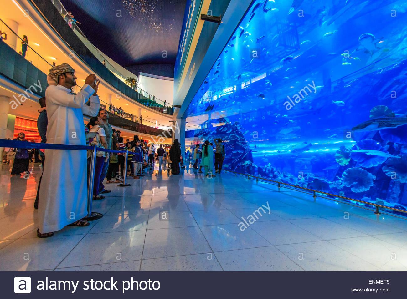DUBAI, UAE -Aquarium in Dubai Mall - world's largest ...