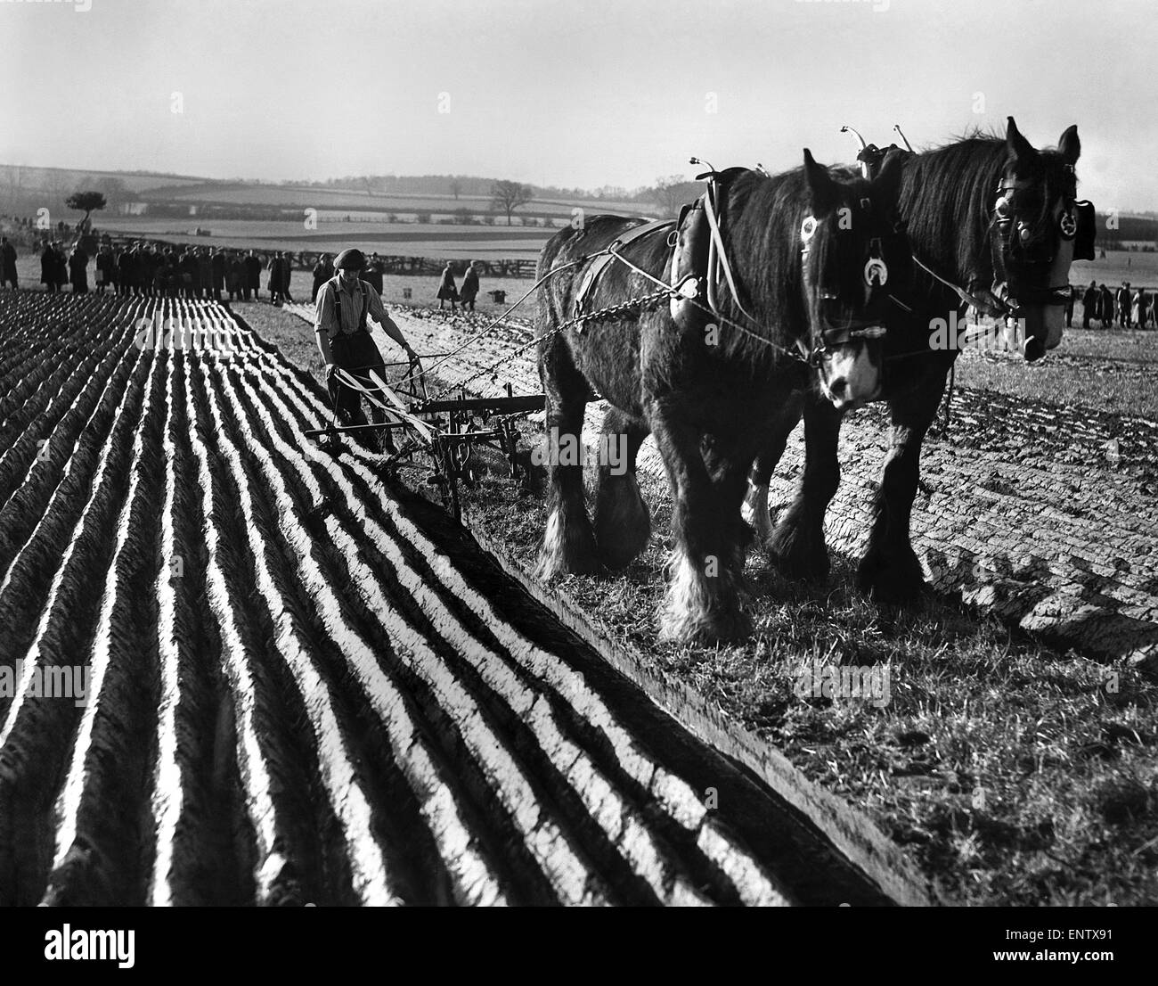 how to start a ploughing match
