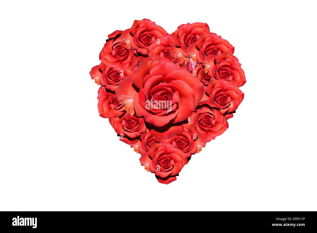 Herz: Rote Rosen - Symbolbild Liebe/ Valentinstag/ heart: red rose ...
