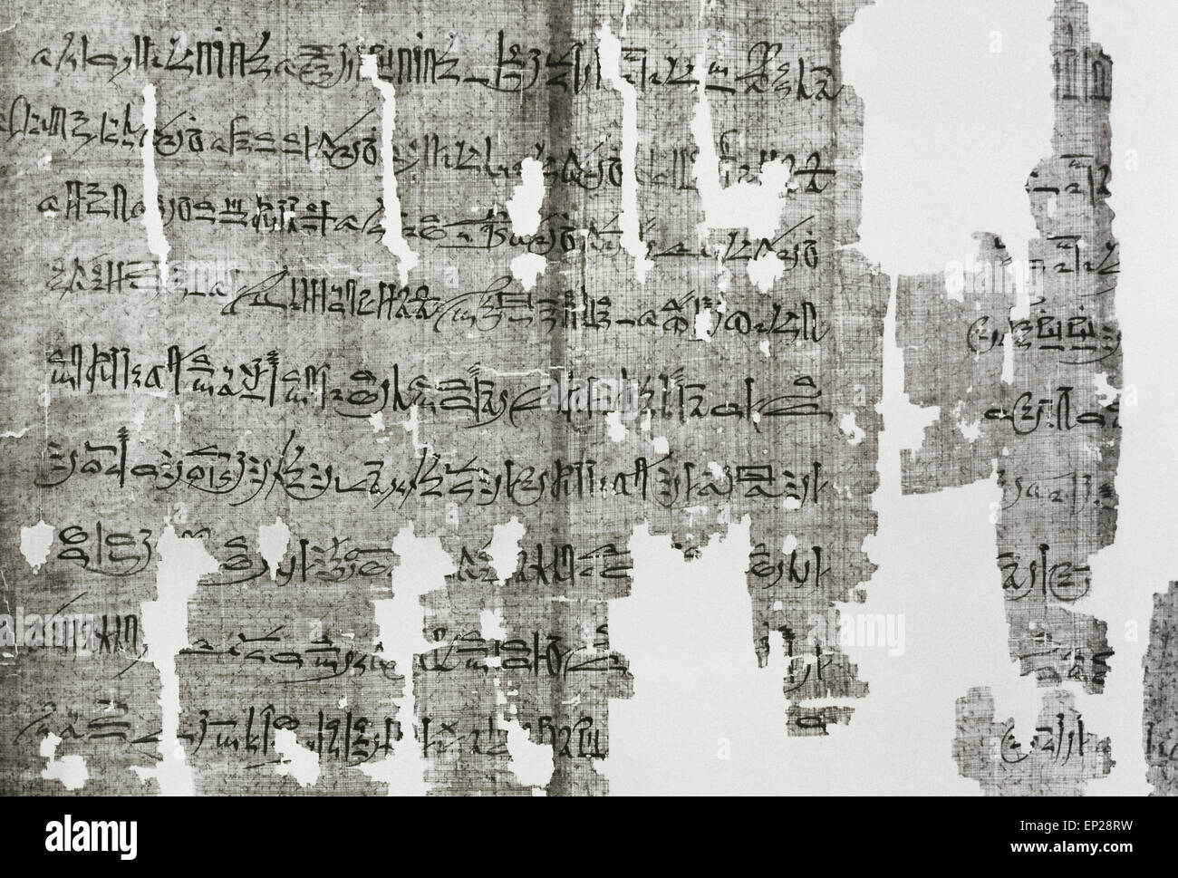 Papyrus Writing Egypt Stock Photos amp Papyrus Writing Egypt Stock Hieratic Papyrus Cursive Writing System Used In Ancient Egypt Process EPRW Papyrus Writing Egypt