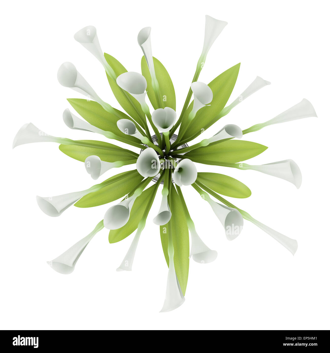 Top view bouquet of lilies in glass vase isolated stock photo top view bouquet of lilies in glass vase isolated reviewsmspy