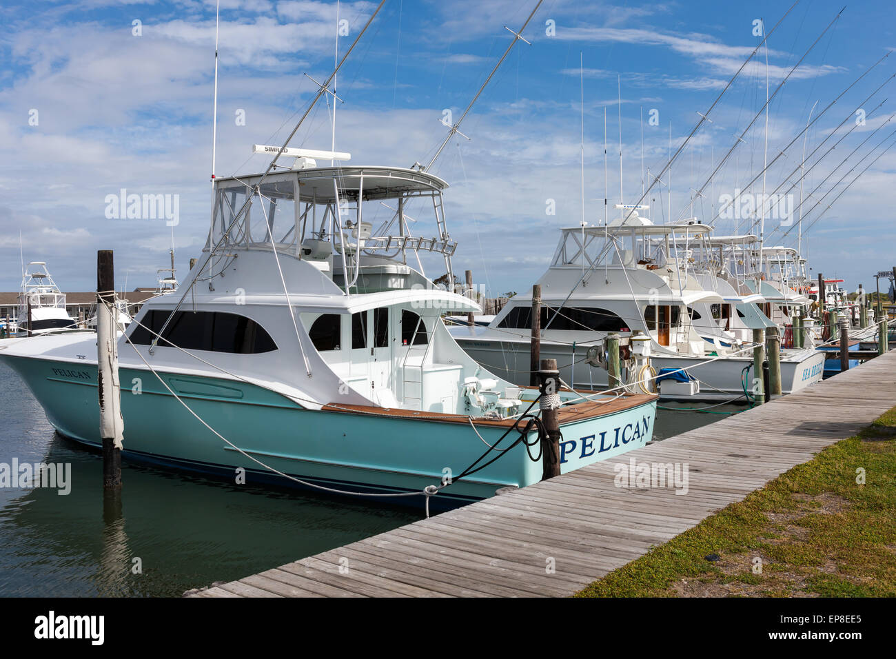 A fleet of charter fishing boats docked at the marina of for Oregon inlet fishing charters