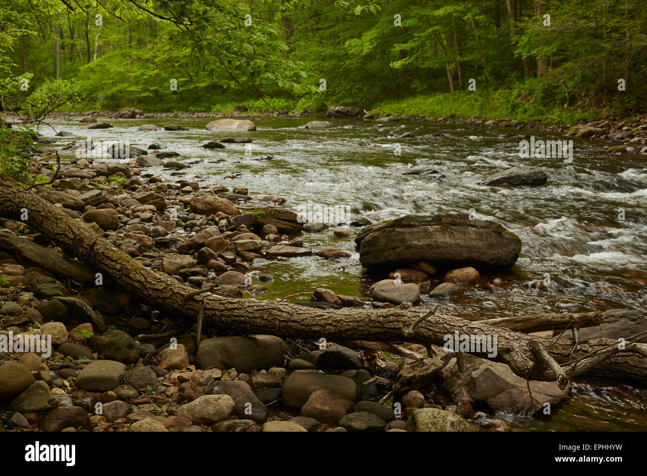 New jersey sussex county layton - Flat Brook At Layton Sussex County New Jersey Usa