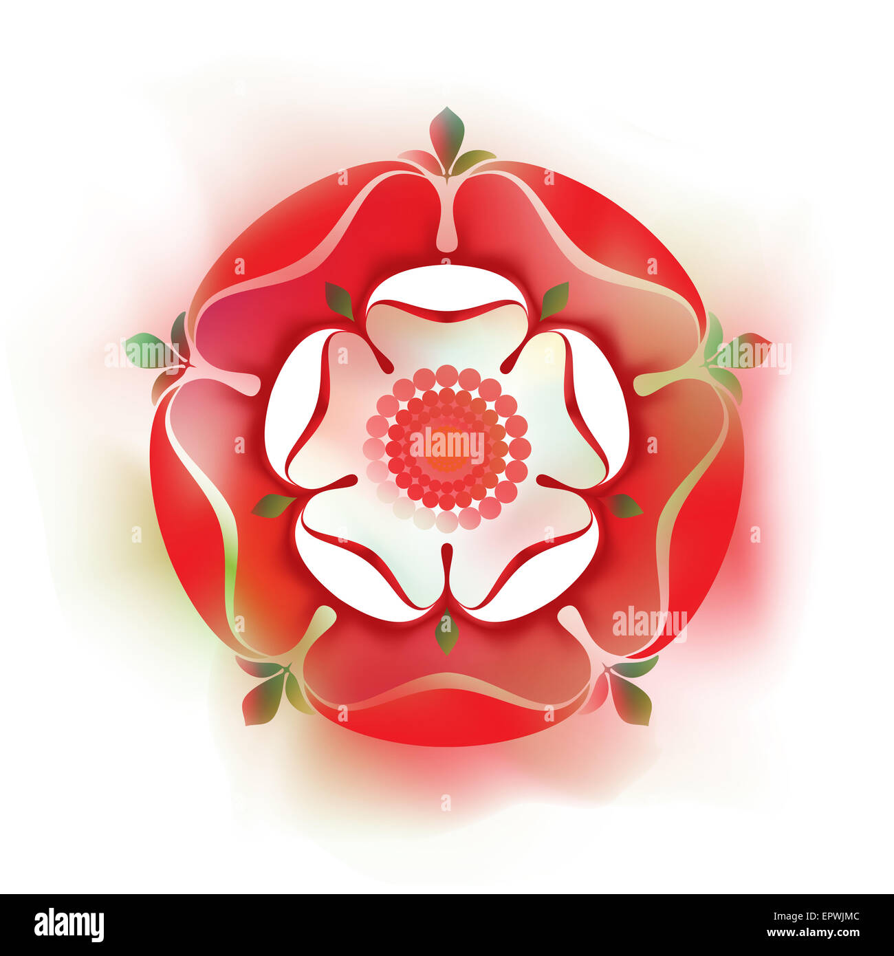 The white rose symbol of the house of york the city of york and tudor dynasty rose shaded illustration english symbol red rose the house of lancaster buycottarizona