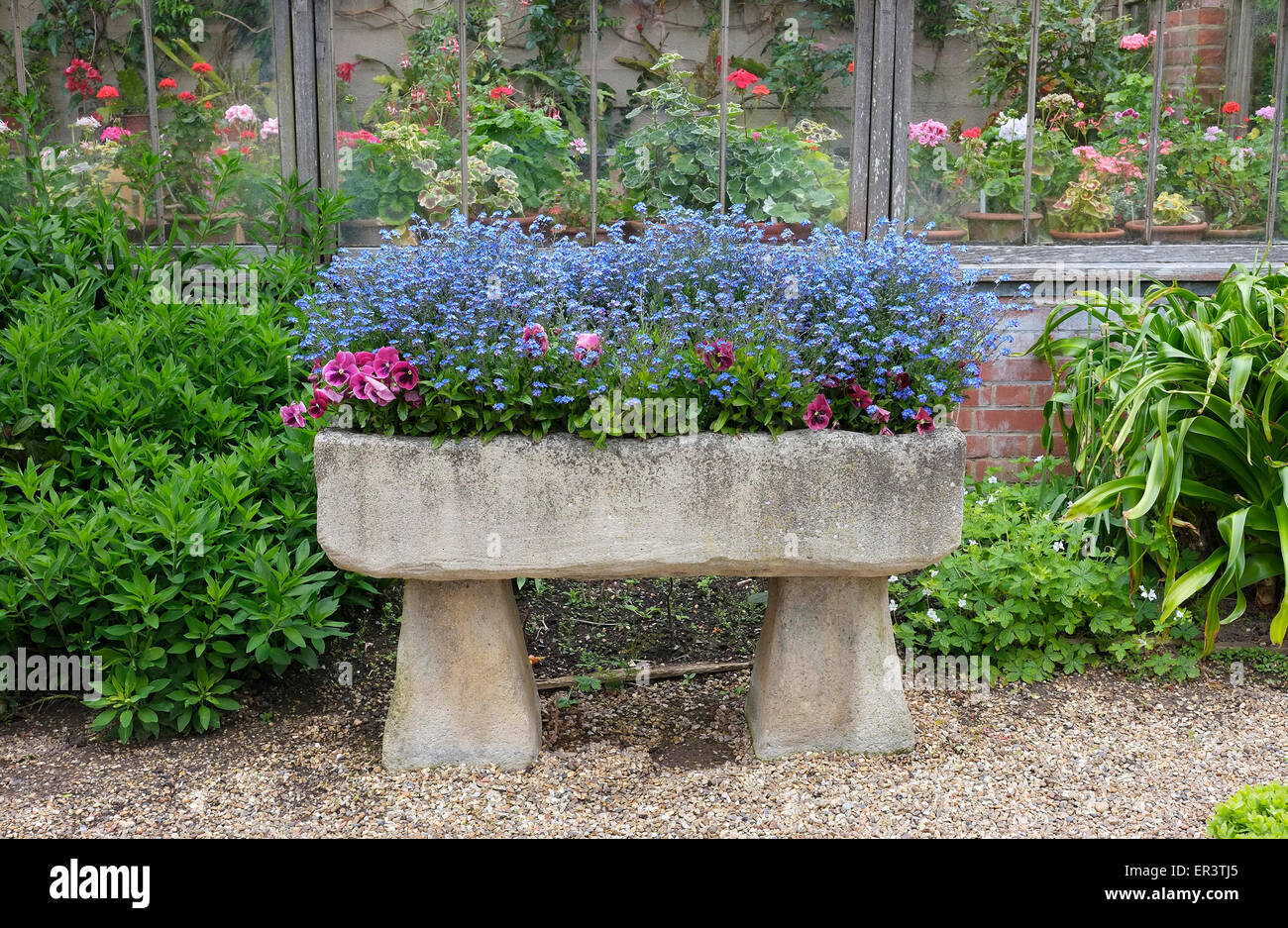 Plants In Old Stone Trough Garden Feature, Norfolk, England