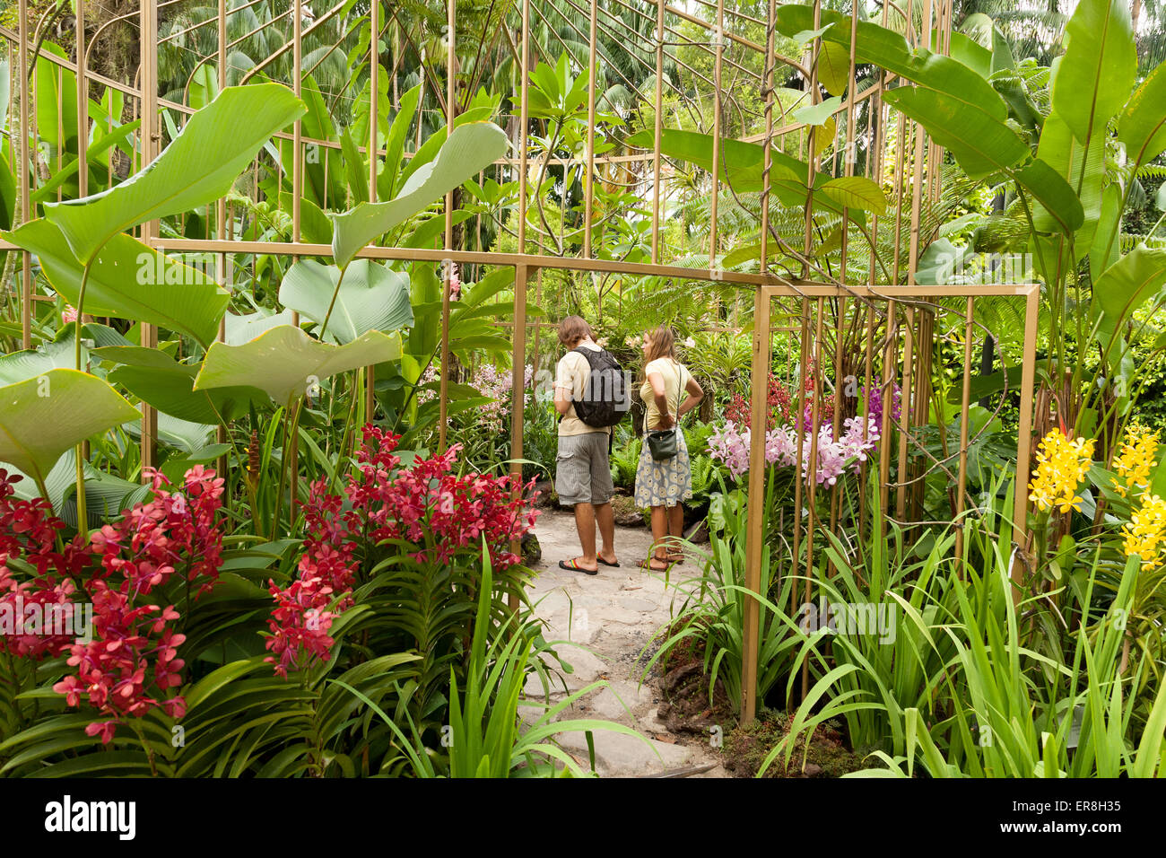 A Tourist Couple Looking At The Orchids, National Orchid Garden, Singapore  Botanic Gardens, Singapore South East Asia